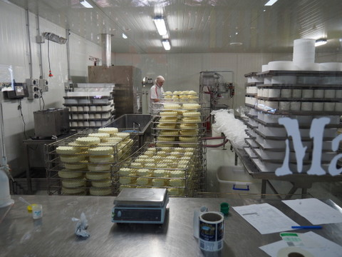 Wicked Cheese, cheesemaking, Richmond