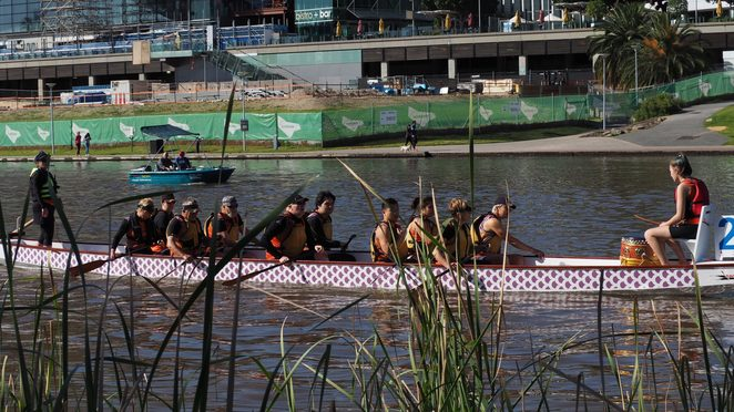 dragon boat, dragon boating, dragon boat racing, adelaide sea dragons, south australian, adelaide, west lakes, come and try, Dragon boat races, river torrens
