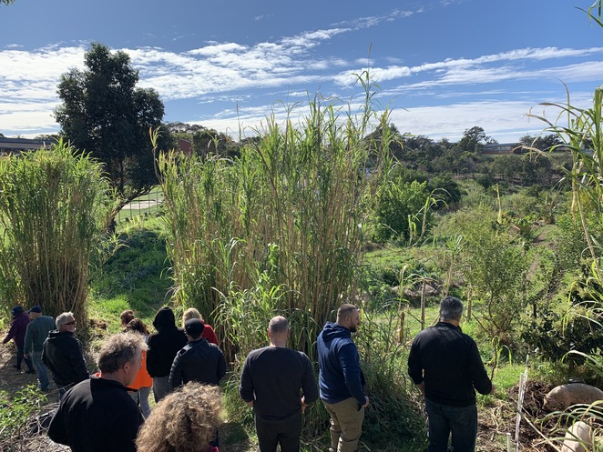 Green Connect Farm, Permaculture, Reduce Wast, Reduce Landfill, fair food, Sustainability, Inclusion, not-for profit, Social Enterprise, Farm, organic