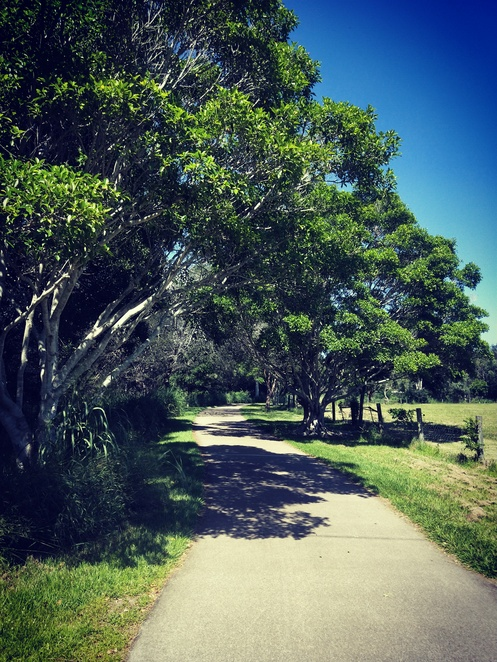Kedron Brook, cycling, bikeway, fitness, things to do, parks