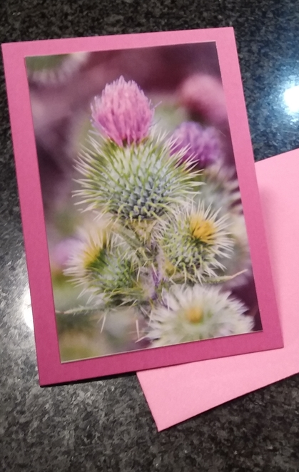 Photo books,Photo memory books,Photo memories,Photo gifts,Photo sharing,How to frame a picture,Photo cards,How to make photo cards,Photo books Australia,Photo sharing platform,
