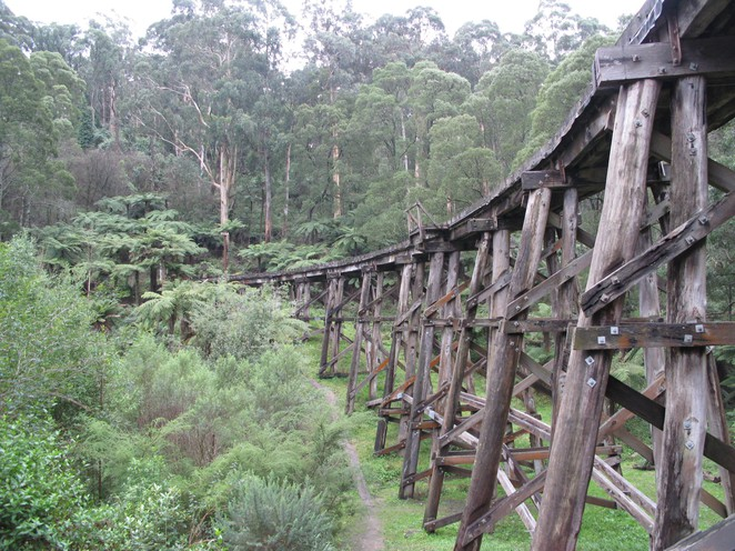 puffing billy railway, trestle bridge, monbulk creek bridge, heritage railways, belgrave, selby,