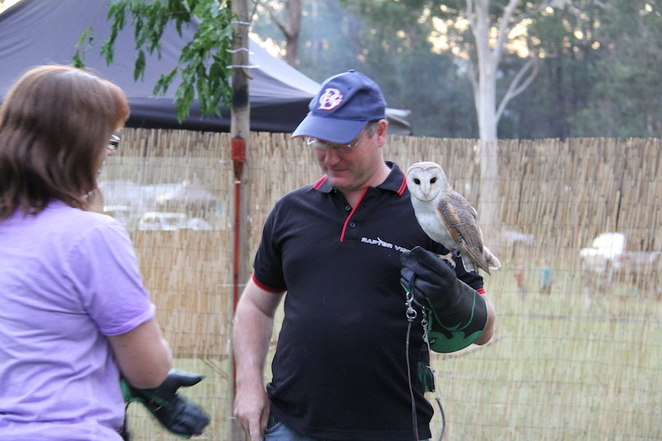 Raptor Vision, Owls, Dave - The Bird Dude, An Evening with Owls