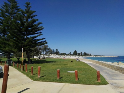 South,Beach,grassed,area