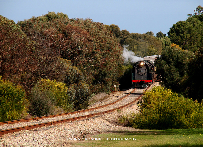 Steamranger Steam Train Cockle Train Victor Harbor