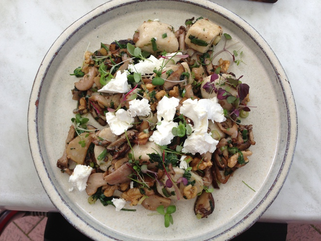 Amazing Gnocchi with Wild mushrooms, goat's cheese and walnuts