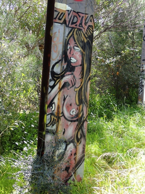 adelaide, street art, mural, urban exploration, graffiti, sculpture, guerrilla art, street installations, graffiti