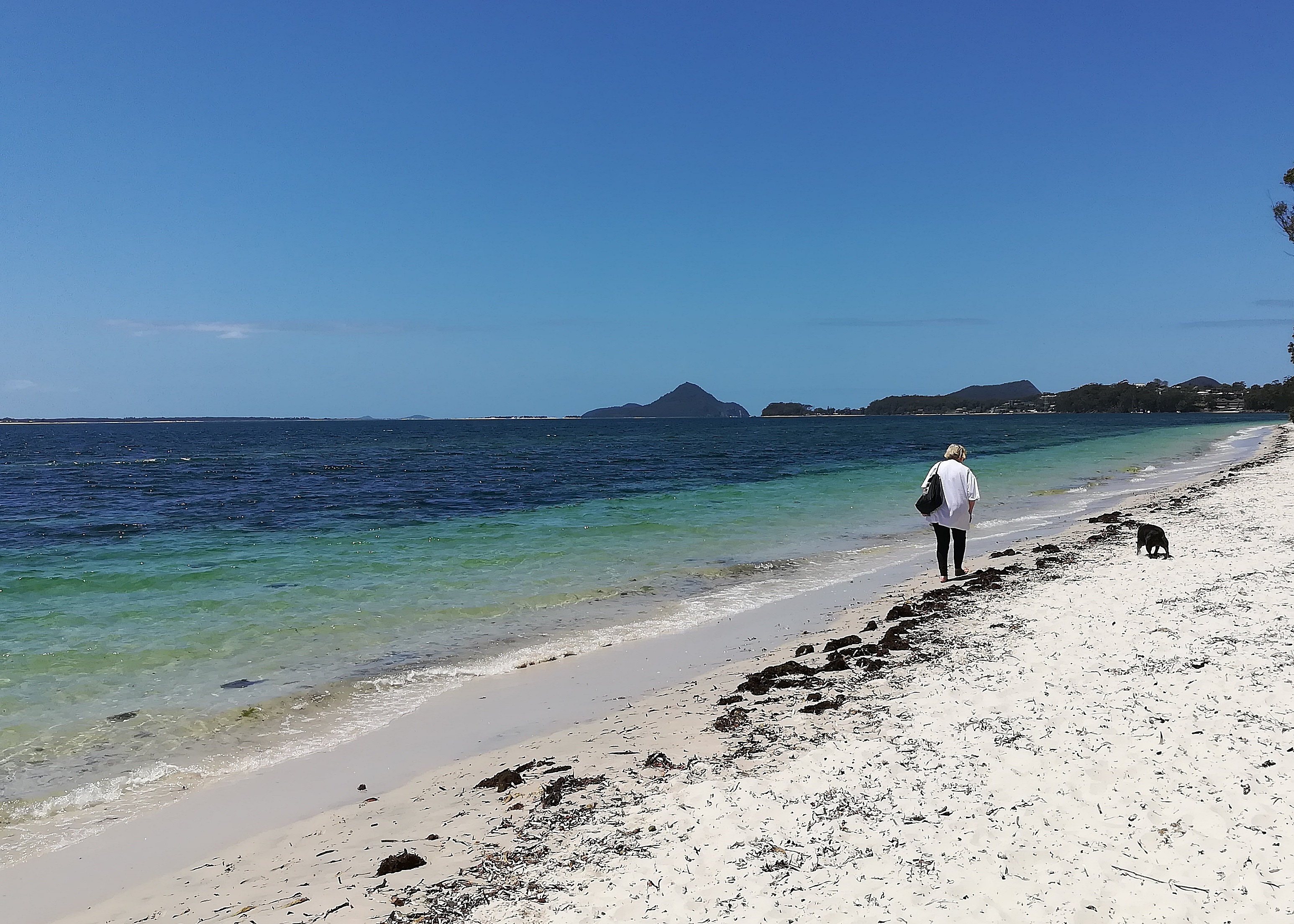 Explore The Beauty Of Caribbean: Bagnalls Beach, Nelson Bay