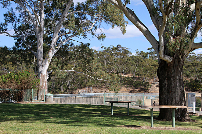 Grassed Area with Picnic Tables