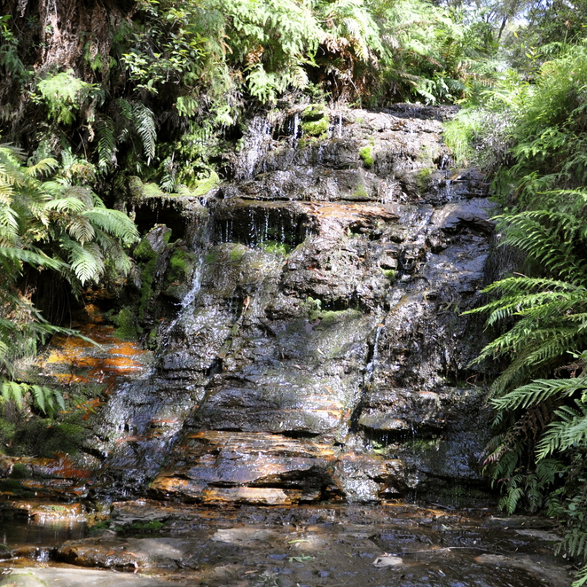 Blue Mountains, Wentworth Falls