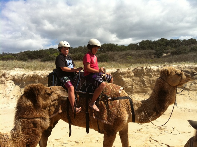Camel riding, Things to do with kids