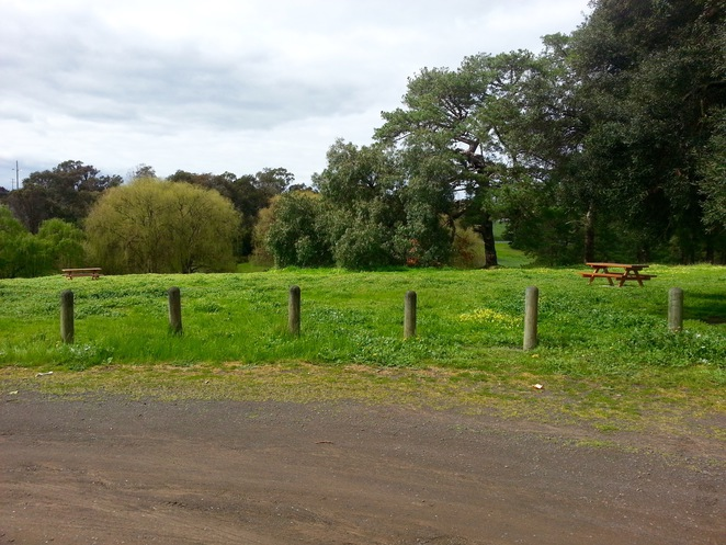 Edsall Reserve, Wallington, Bellarine Peninsula, Picnic Tables