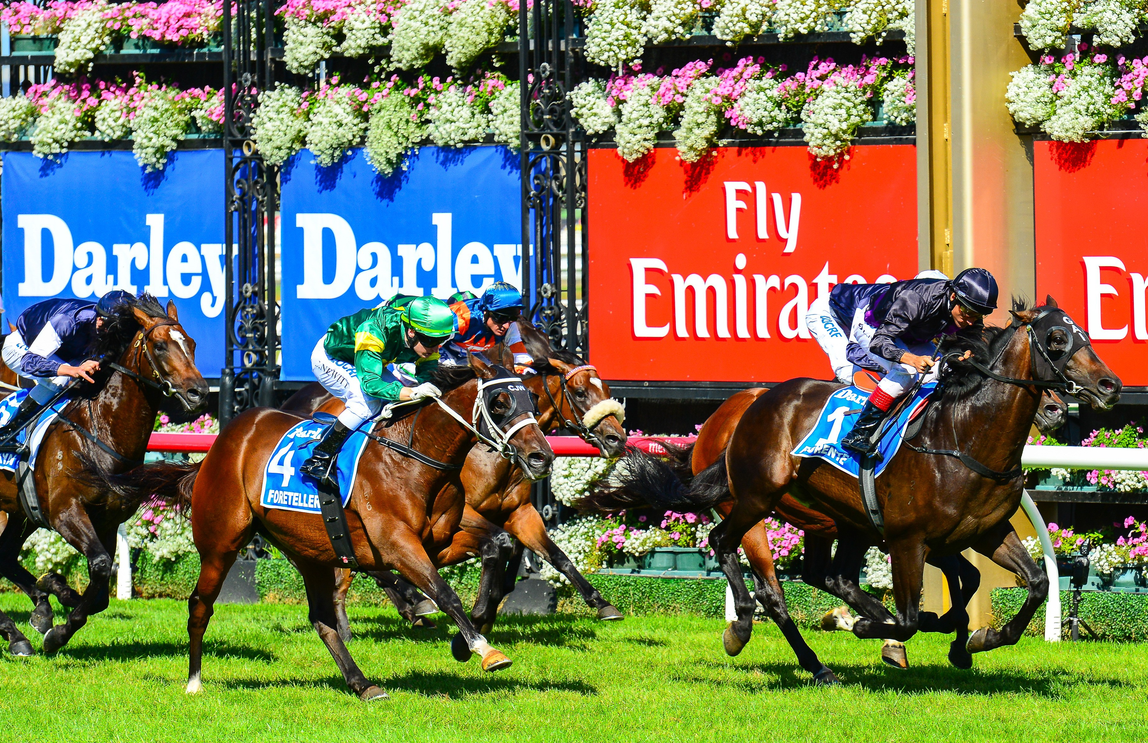 stakes day - photo #49