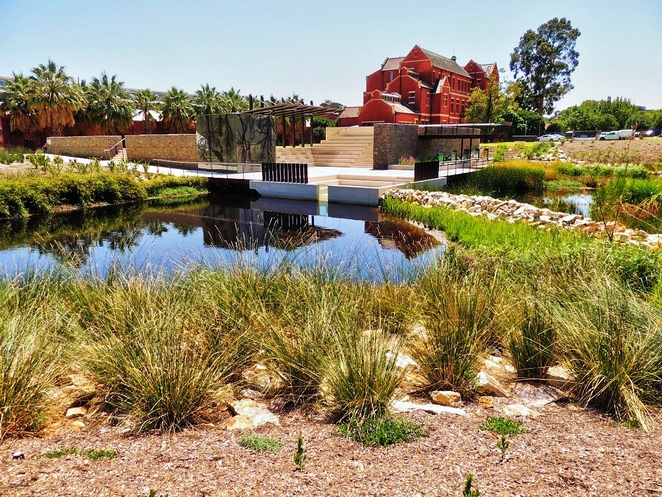 first creek wetland, work of art, adelaide botanic gardens, adelaide botanic gardens history, bicentennial conservatory, wetland habitat, water conservation, in adelaide, form and function, viewing platform