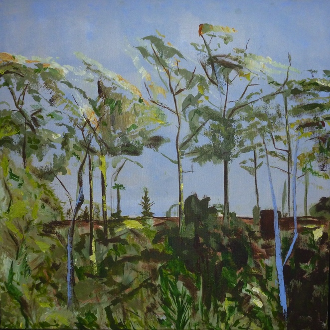 Title: View to Adelaide Goal