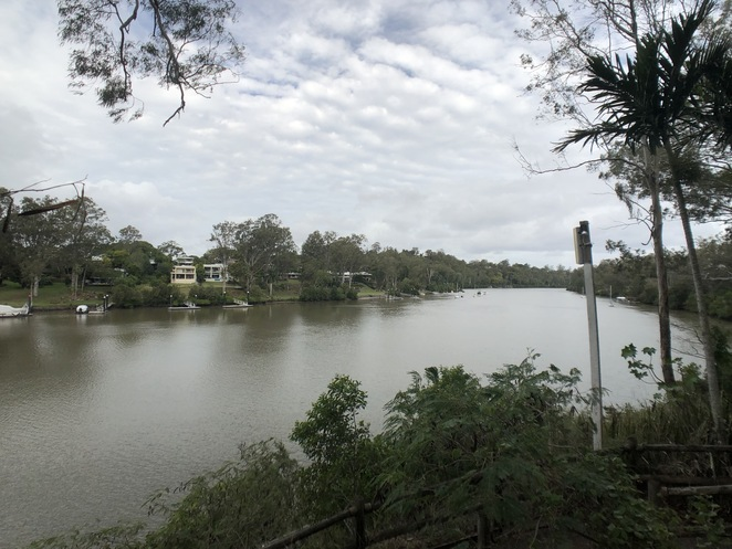 Brisbane River from Lone Pine