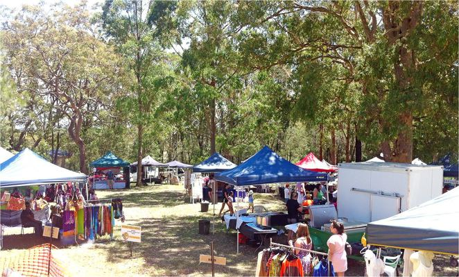 Under the trees - Mangrove Mountain Markets