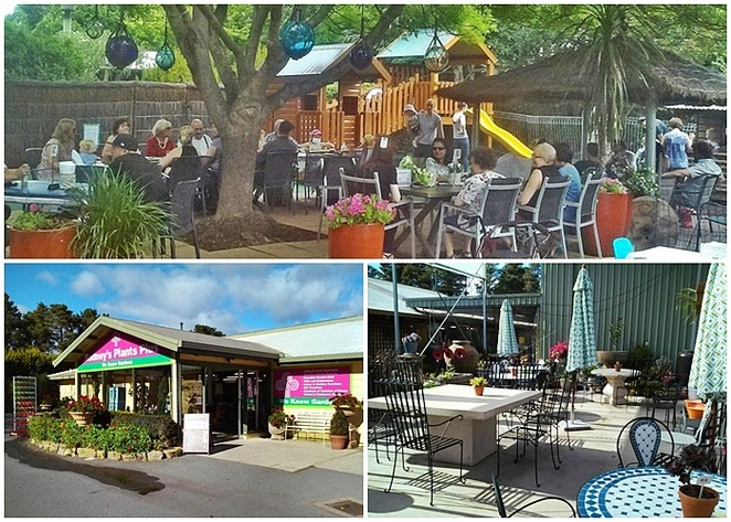 rodneys cafe, rodneys plants plus, cafes, outdoor, el fresco, outdoor dining, summer, canberra, ACT, plant nurseries,