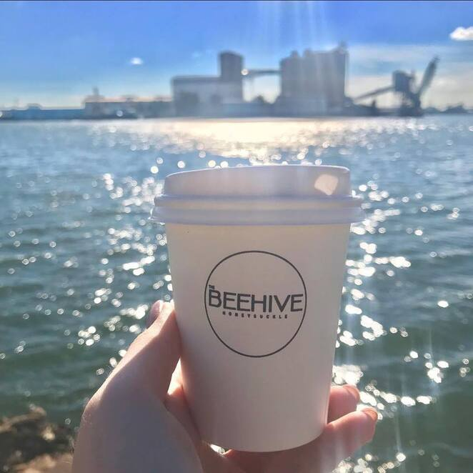 the beehive, honeysuckle precinct, newcastle, coffee, takeaway, best coffee, NSW, views, water views, hunter river,