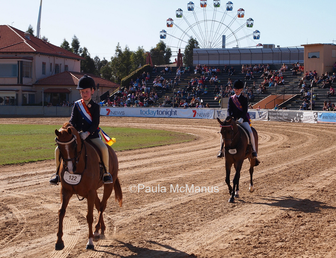The Main Arena, Royal Adelaide Show (�paula mcmanus)
