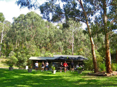 Treefrog Cafe Upper Fern Tree Gully