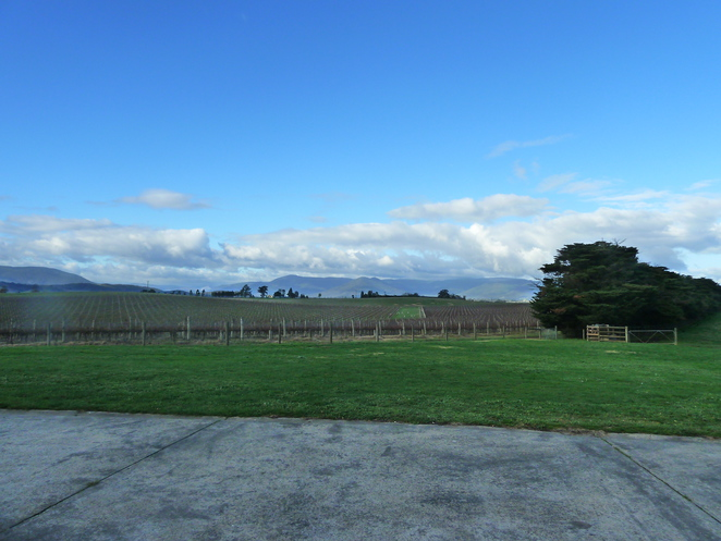 winery, view, yarra valley, zonzo
