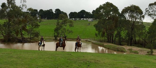 Yarra Valley Horse Trails