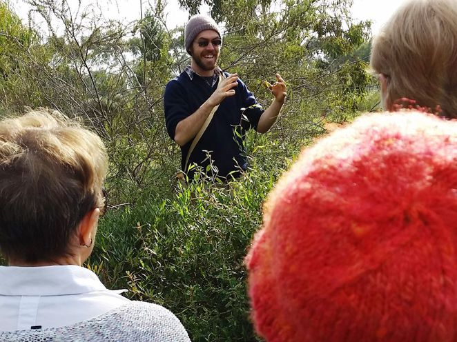 adelaide parklands, guided walks, free guided walks in adelaide parklands, in adelaide, bonython park, community centre, free guided walks, all ages welcome, wagtail urban farm, steven hoepfner