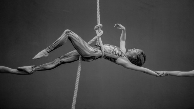 Aerial Superstars - Sequins and Sinew,