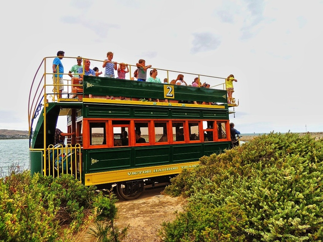free things to do, school holidays, school holidays activities, fleurieu peninsula, activities for kids, school holidays activities, fleurieu peninsula attractions, fun things to do, victor harbor, granite island horse drawn tram