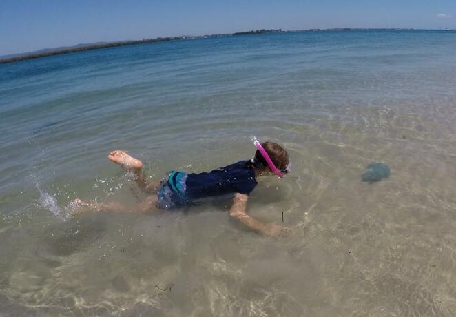 Snorkeling at South Currigee Campground