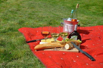 picnic,on,the,grass