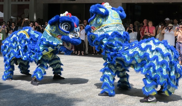 Chinese, lion dance, dancers, harmony, festival