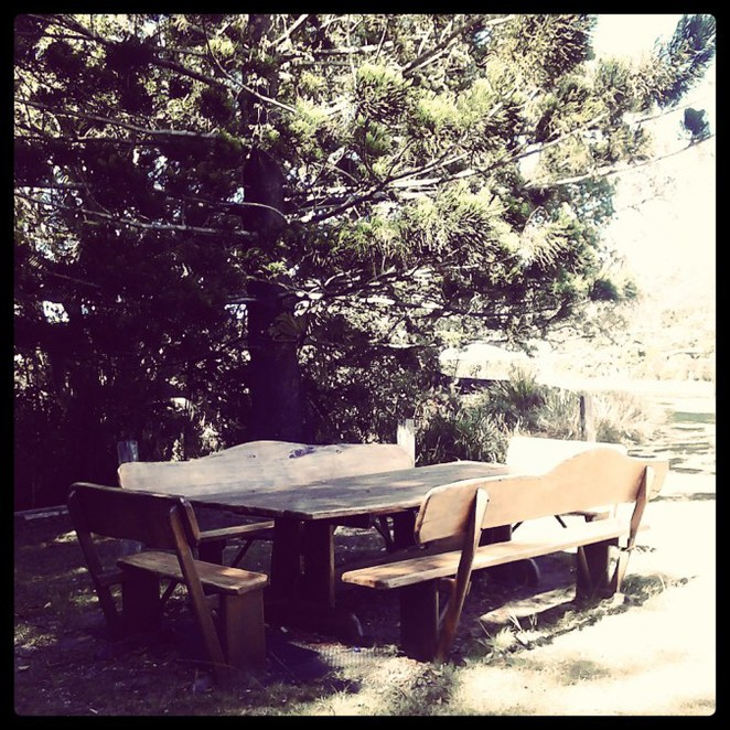 currumbin valley, lunch, tea, coffee, organic