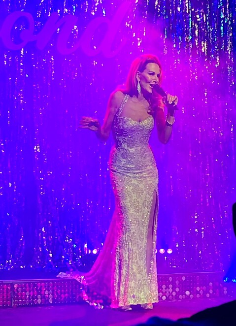 dolly diamond's star for a night review, community event, theatre, midsumma festival 2021, fun things to do, night life, date night, entertainment, performing arts, big hair productions, tash york, rhonda burchmore