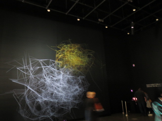 Museum of Discovery, Gould Interactive Gallery, Adelaide