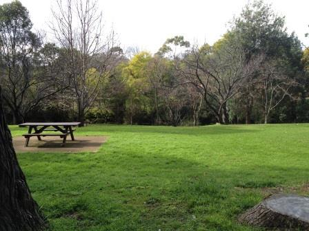 Muston Park, Chatswood, Chatswood Park