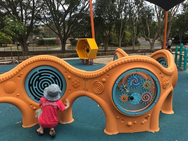 playground, all abilities, disability, arana hills, hills district