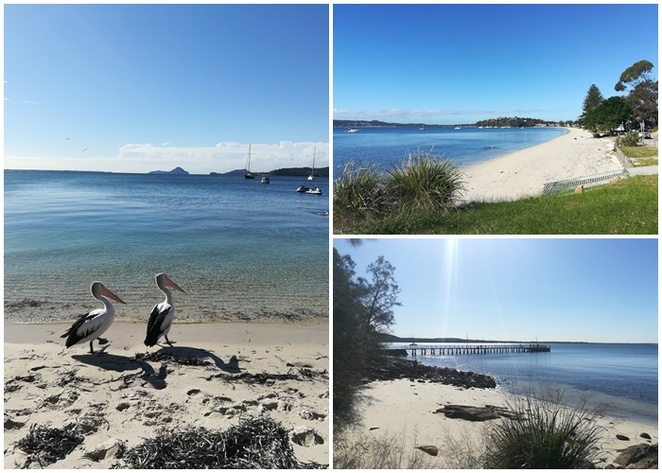wanda beach, george reserve, salamander bay, soldiers point, port stephens, NSW, bays, beaches, walks, wanda wanda head, bannisters port stephens, big 4 soldiers point, soldiers point jetty, kangaroo point, holberts oyster farm, nelson bay, things to do,