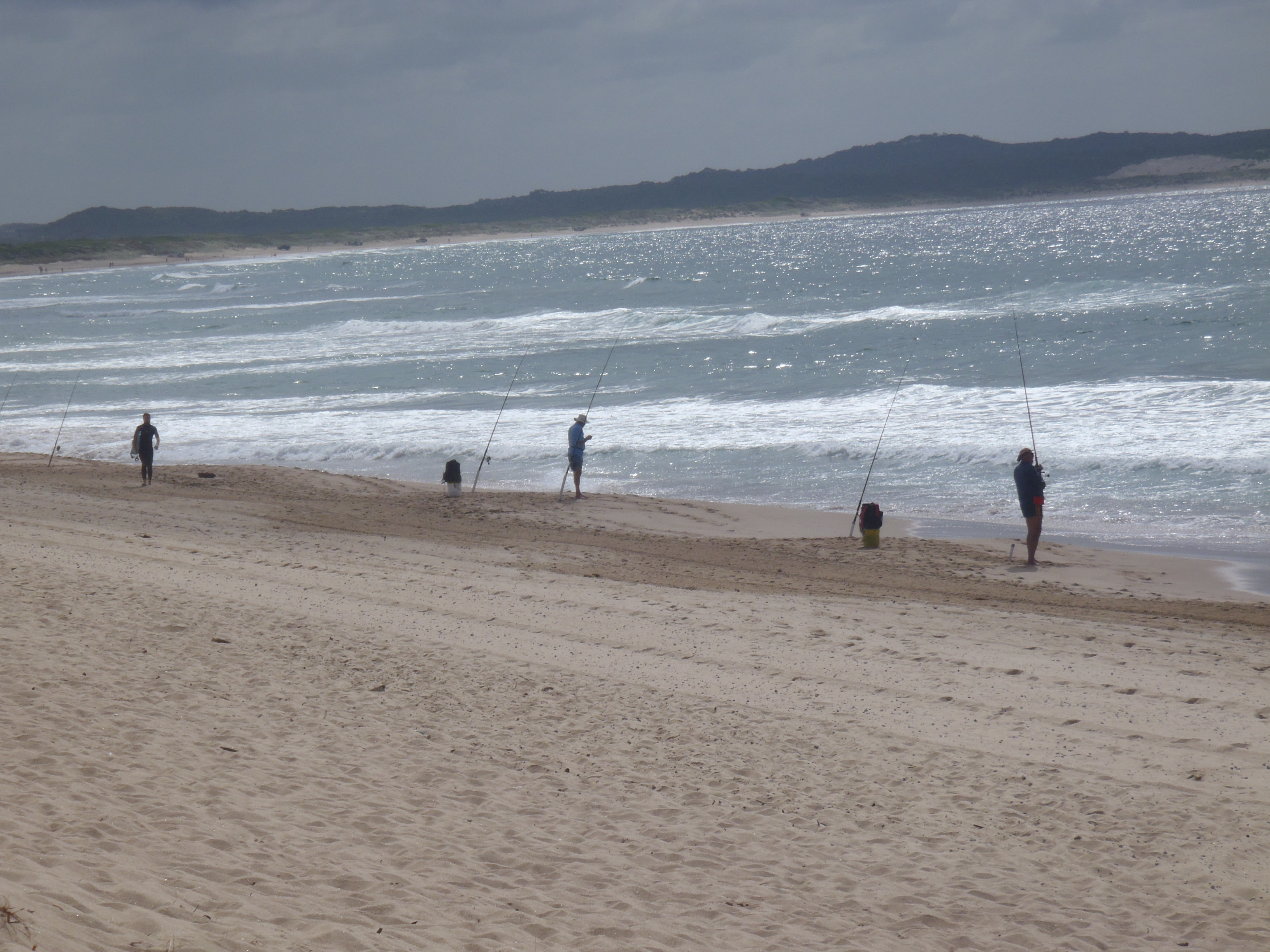 Fishing walking and picnic spots in the sutherland shire for Fishing spots finder