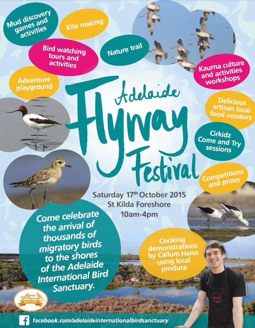 adelaide flyway festival, adelaide international bird sanctuary, st kilda, st kilda addventure playground, free things to do, fun things to do, activities for kids, mangrove trail, free, festival poster