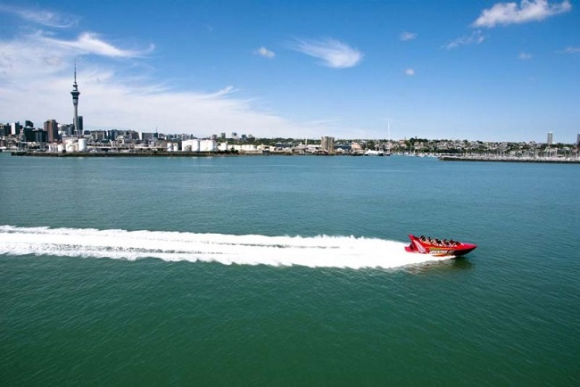 Auckland Harbour jet boat