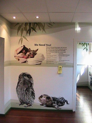 The discovery centre at Kanyana Wildlife Rehabilitation Centre. Image is from the Kanyana Wildlife Rehabilitation Centre website.