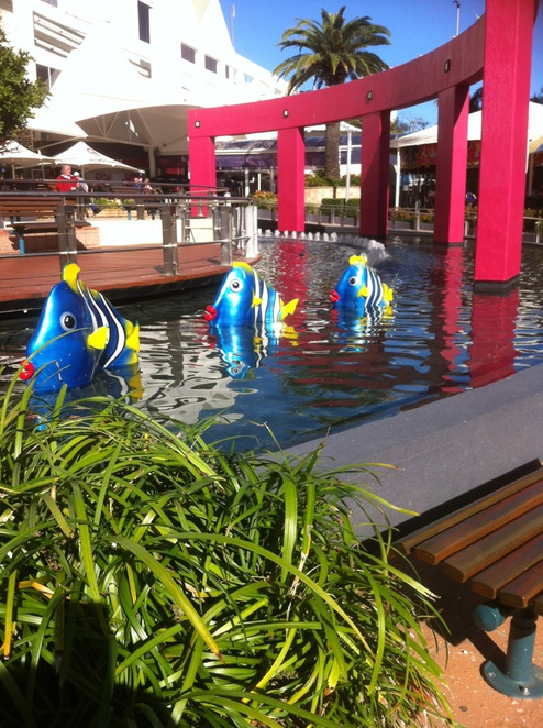 fish in broadbeach, broadbeach mall