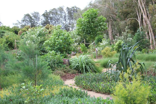 Gardens, Flowers, Gardening, Outdoors, Nature, Gold Coast, Workshops