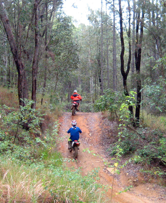 Trail bikes on one of the many 4WD trails in the Glass House Mountains