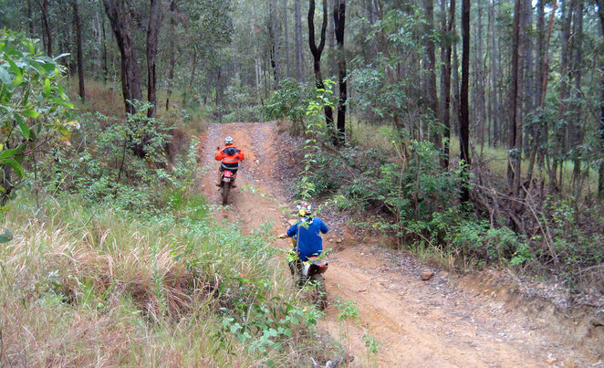 Trail bike riders in the Glasshouse Mountains