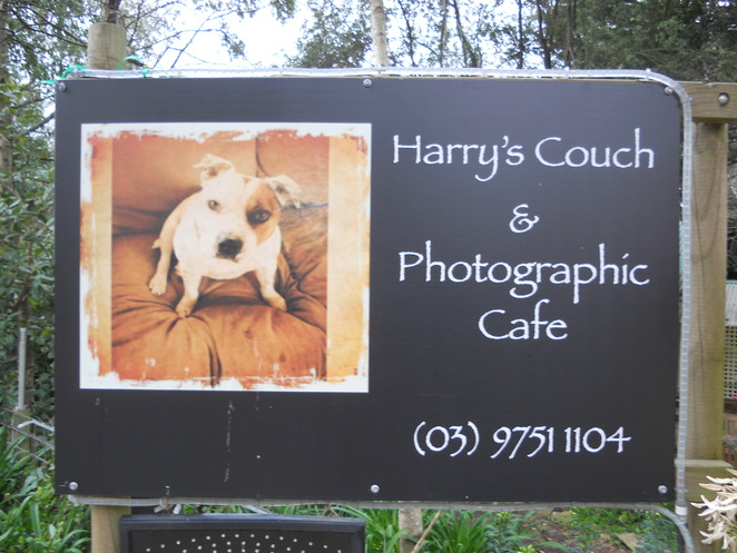 Harry's lounge & Photographic Cafe