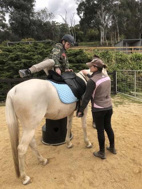 Horse Riding, equestrian, led trail rides, horse riding holiday program, Warrandyte state forest, horse riding lessons, bush experience, Horse Riding Experience, horse riding for kids, agistment,