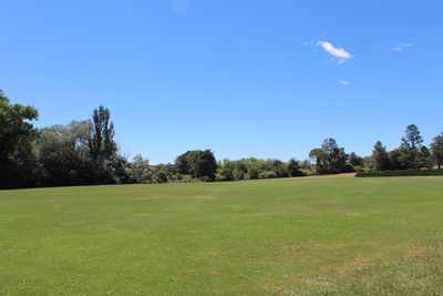 forestry oval, sports ovals, yarralumla 2